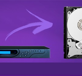 Hard disk purple western digital