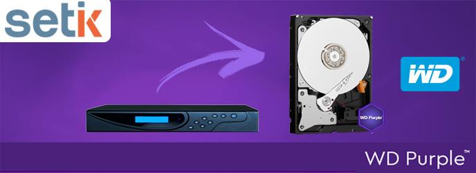 Hard-disk-purple-western-digital