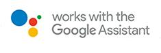 telecamera compatibile con google home
